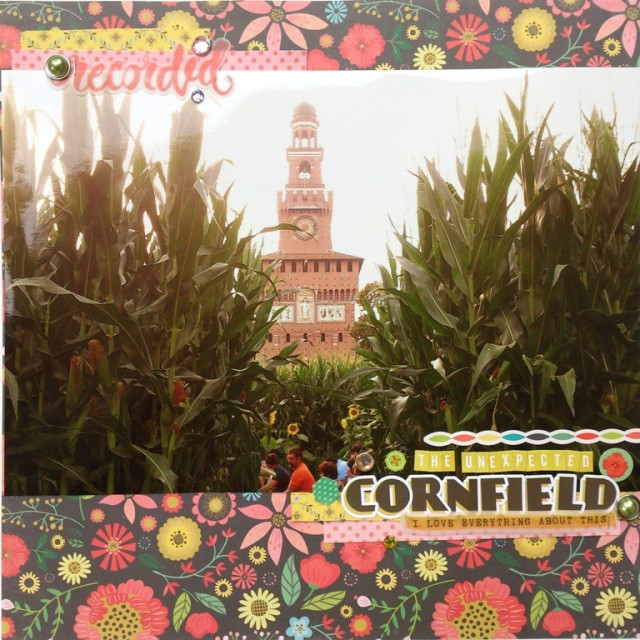 The Unexpected Cornfield part1