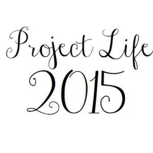 Projectlife2015